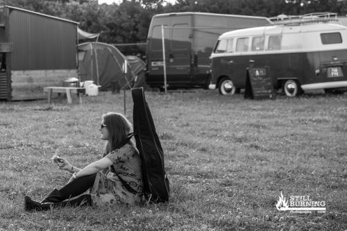 2000trees 2015 - flaresnseagulls.com